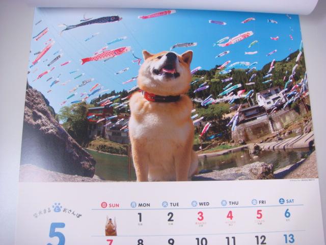 柴犬まるの5月のカレンダー